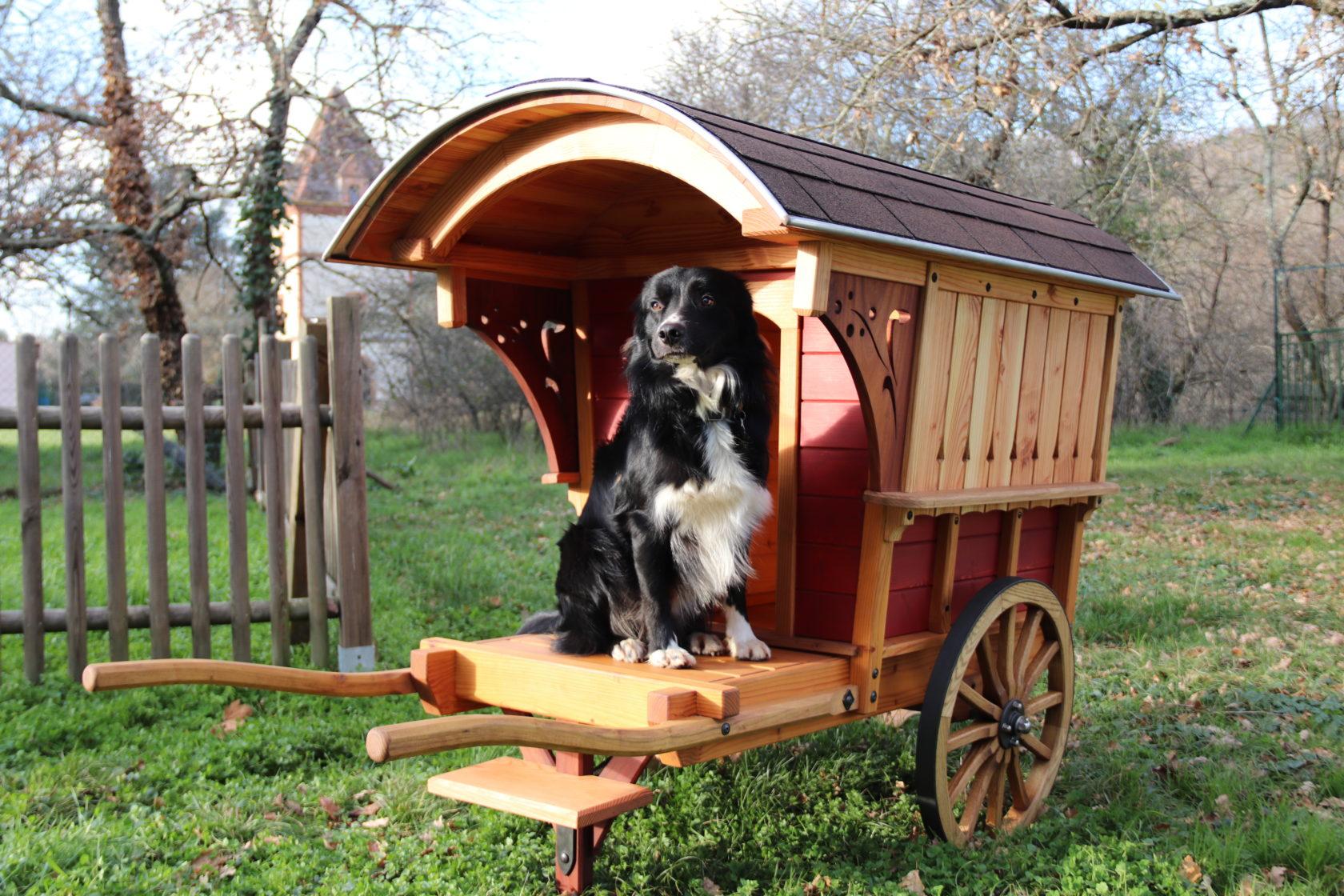 niche originale de qualité pour chien de luxe